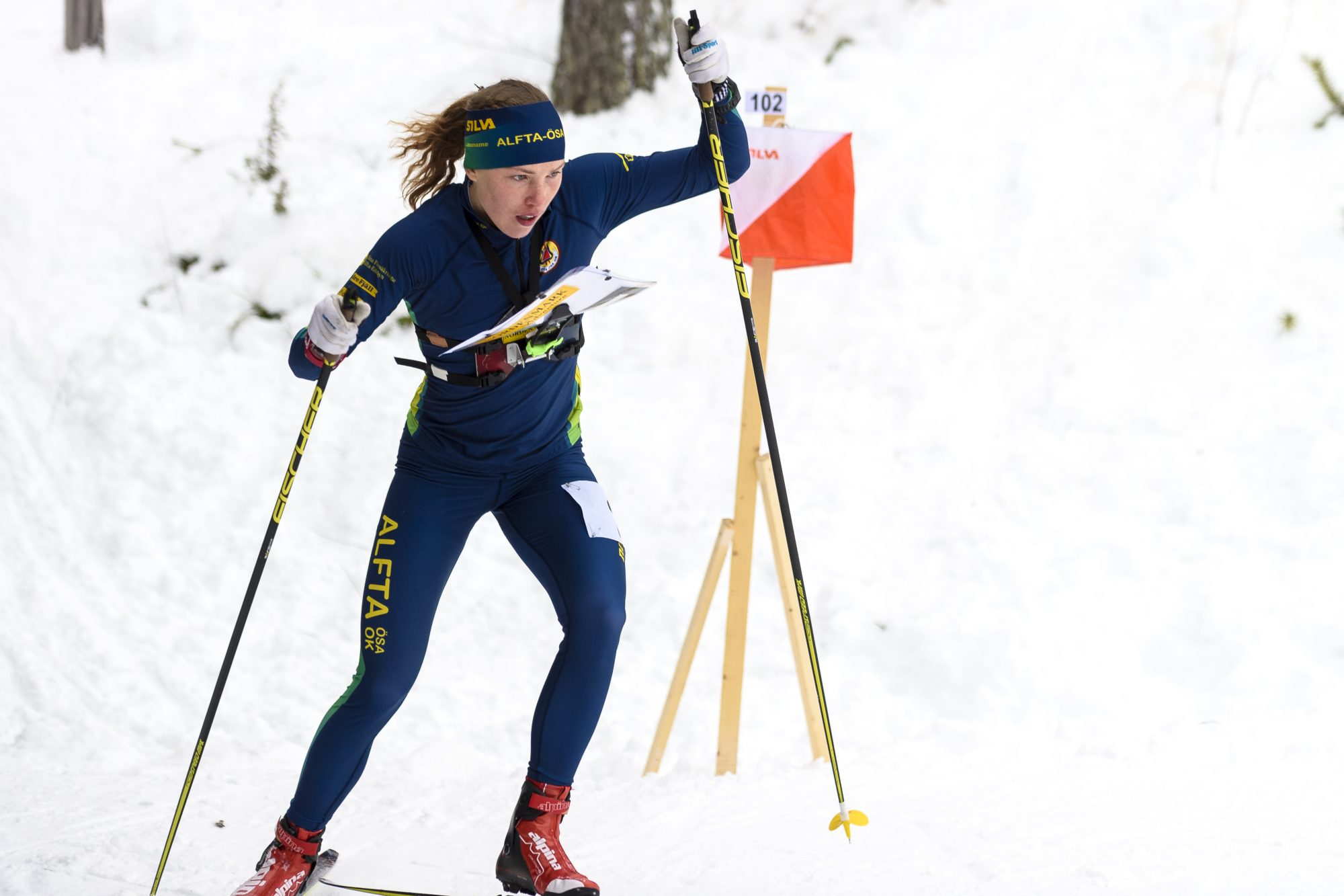 Tova Alexandersson, Alfta-…sa tävlar i damernas skidorientering jaktstart under dag fem av SM-veckan den 31 januari 2016 i Piteå.
