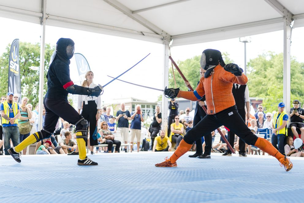 HEMA (Historical European Martial Arts)